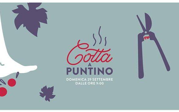 Cotta-a-Puntino-Tenuta-i-Fauri-Ari-Chieti