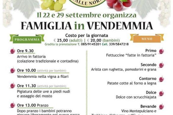 Famiglia-in-vendemmia-Fattoria-Riccitelli-Vicoli-Pescara