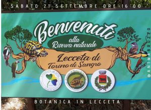 Passeggiata-botanica-Lecceta-di-Torino-di-Sangro-Chieti