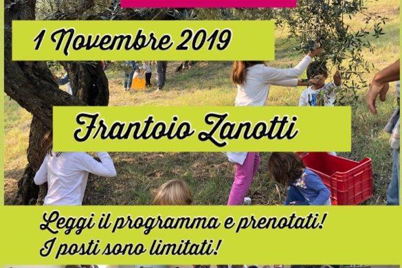 Frantoio-Zanotti-Moscufo-Pescara