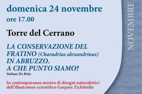 Visita-guidata-Torre-del-Cerrano-Pineto-Teramo
