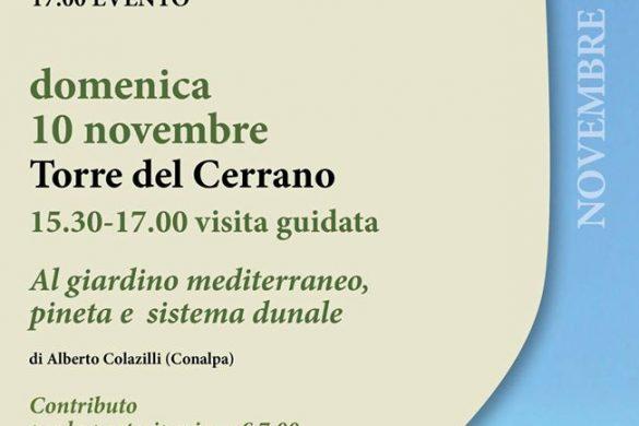 Visite-guidate-Torre-del-Cerrano-Pineto-Teramo