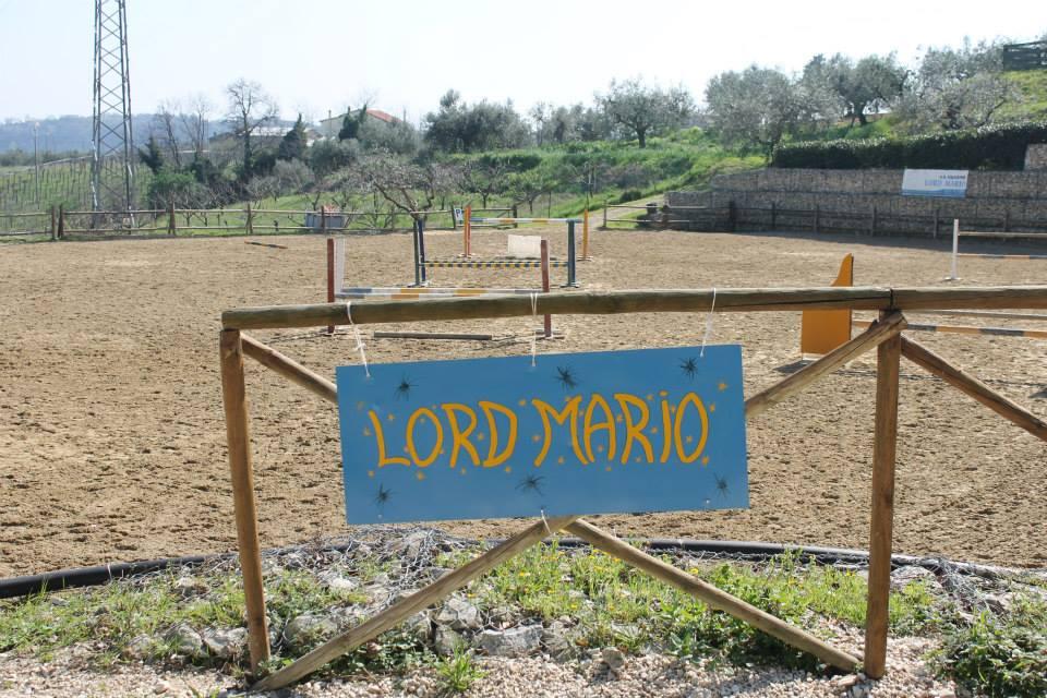 area maneggio new lord mario a francavilla al mare di chieti