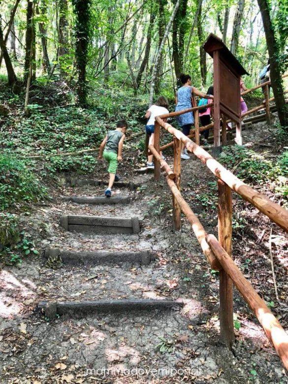 Sentiero dallo stagno presso la Riserva Naturale Castel Cerreto