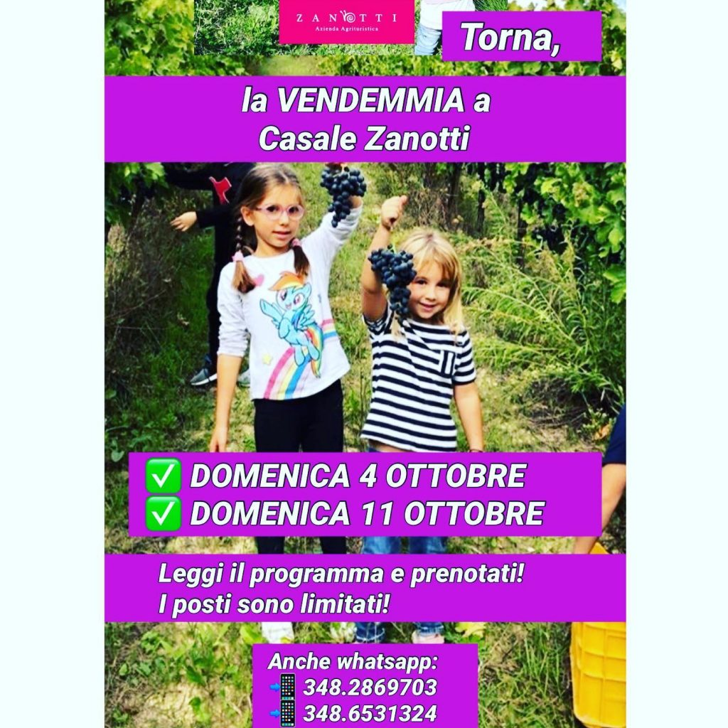 Vendemmia con i bambini in Abruzzo presso Casale Zanotti a Moscufo