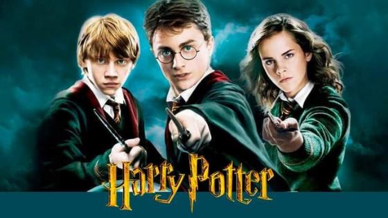 Harry Potter su Canale 5