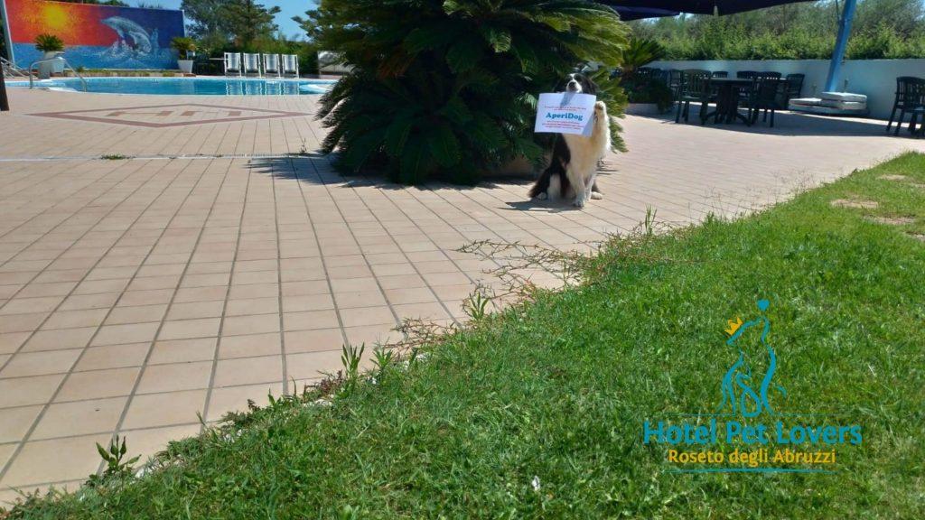 Hotel Marina piscina e giadino