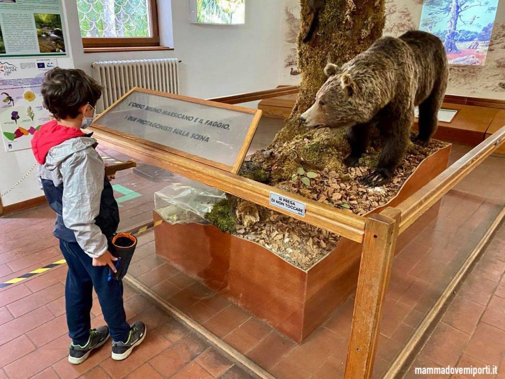 Centro Visita Natura di Pescasseroli per vedere gli orsi in Abruzzo