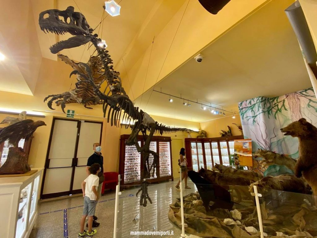 Visita Museo Universitario di Chieti