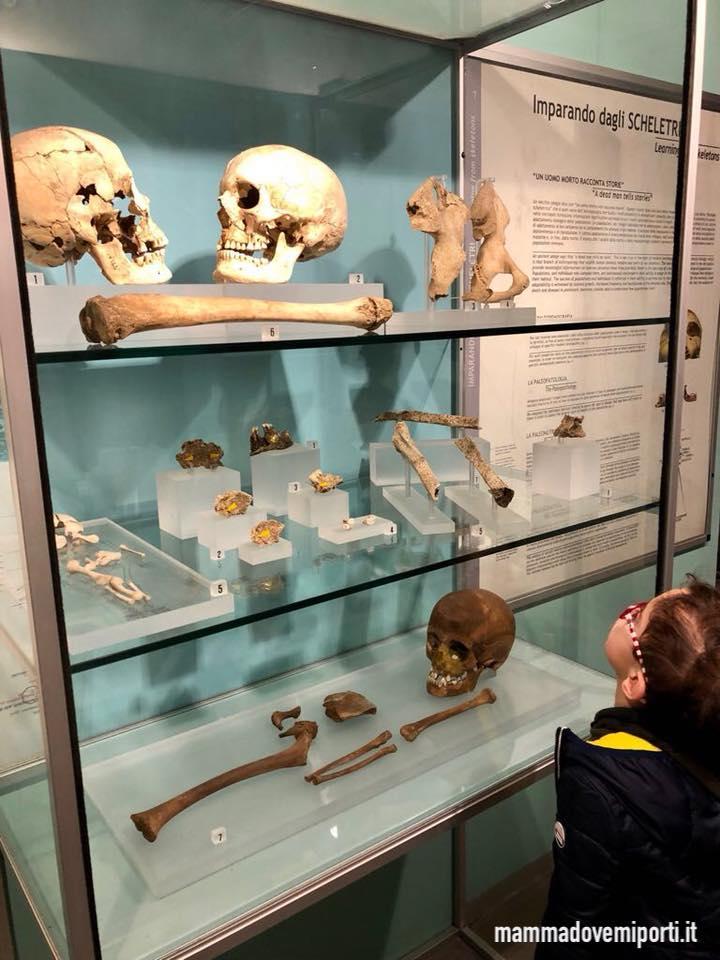 Visita al Museo Archeologico Nazionale di Campli