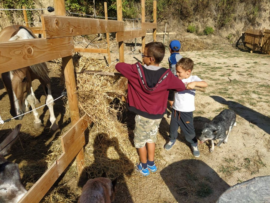 Bimbi che danno da mangiare ai cavalli da Radici Country Club