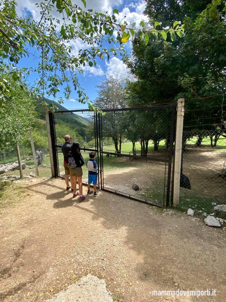 Il cancello nero dove aspettare l'arrivo della guida al Centro Visita Daini