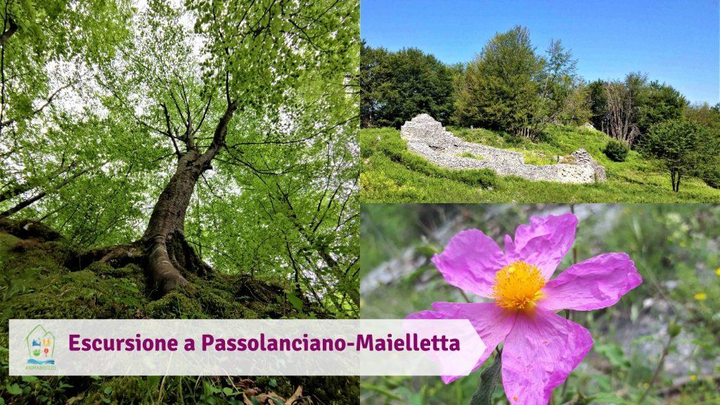 Escursione a Passolanciano-Maielletta