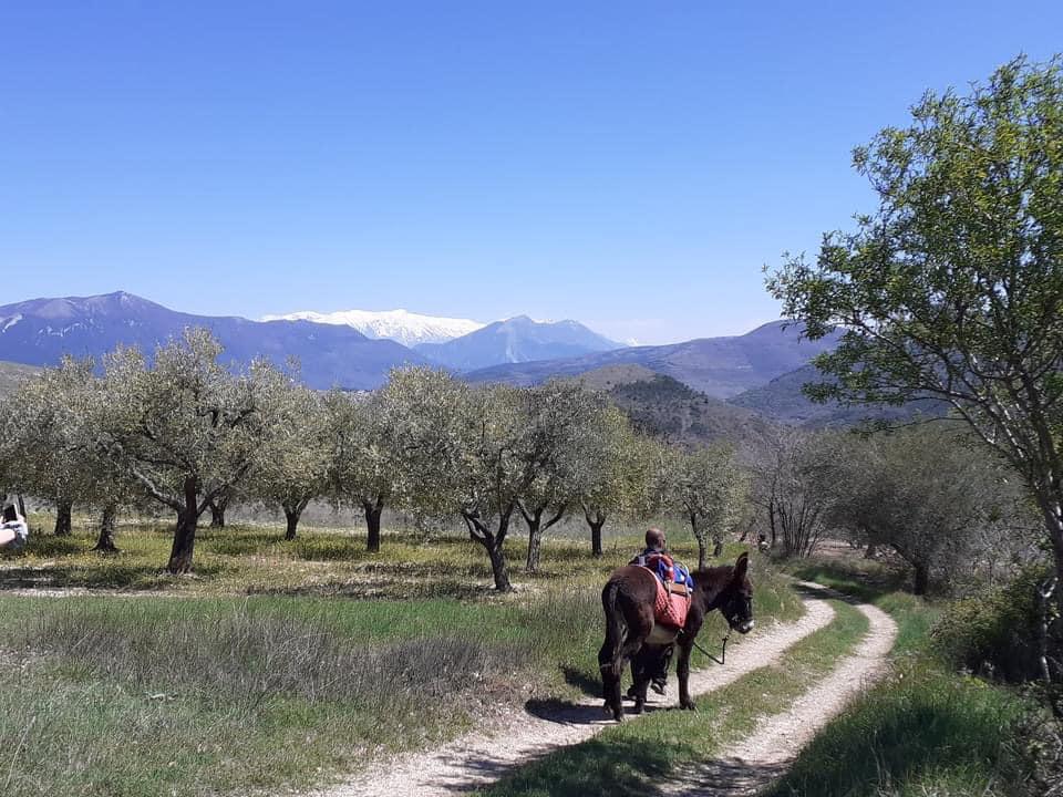 Escursione someggiata con Gira e Rigira