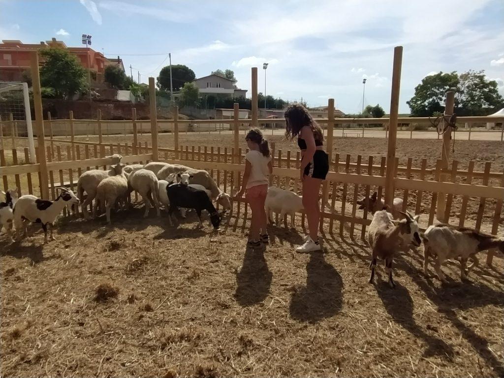 Fattoria didattica Radici Country Club di Pescara