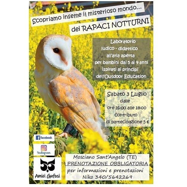 Evento per bambini Mosciano Sant'Angelo