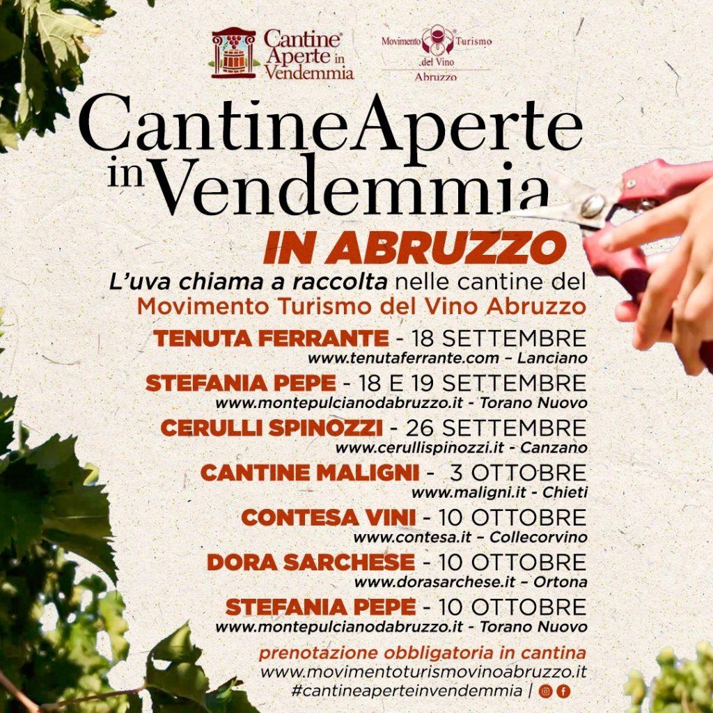 Vendemmia in Abruzzo per bambini